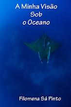 A MINHA VISÃO SOB O OCEANO