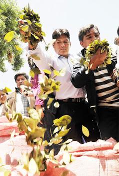 algo extraño. porqué los cocaleros tuvieron que ir a La Paz para pedir la expulsión del Obispo Tito