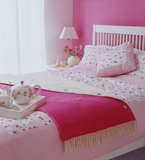 De warme stal januari 2011 - Blauwe kamer voor meisje ...
