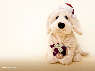 Christmas Dog Puppy Wallpaper