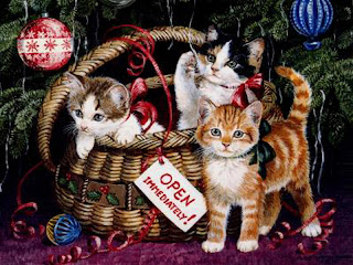 Free Christmas Cat Wallpapers