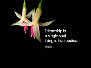 quotes wallpaper for freindship