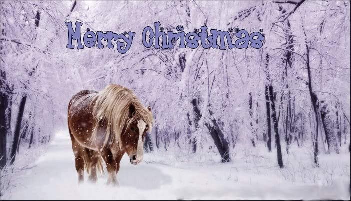 a horse of course  and rabbits too  merry christmas