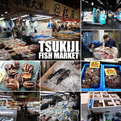 Japan tsukiji fish market in tokyo japan ivan about town for Japan fish market