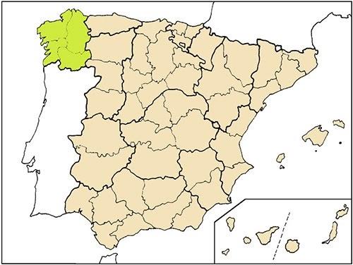 Panis nostrum panes tradicionales de galicia 1 - Donde alojarse en galicia ...