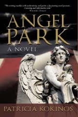 Angel Park, The Novel