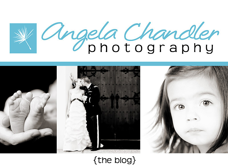 Angela Chandler Photography