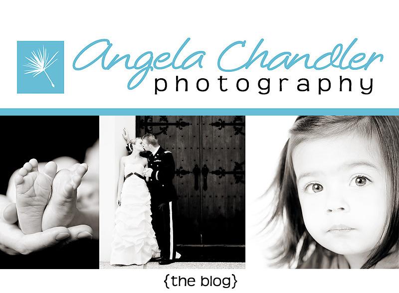 Angela Chandler Photography