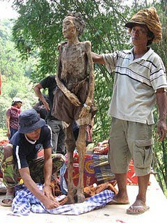 26879 1195539983570 1680593833 384333 7108208 n Toraja Unique Ritual: Cleaning and Changing Clothing Ancestors corpse