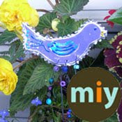 Follow Miy Twitter