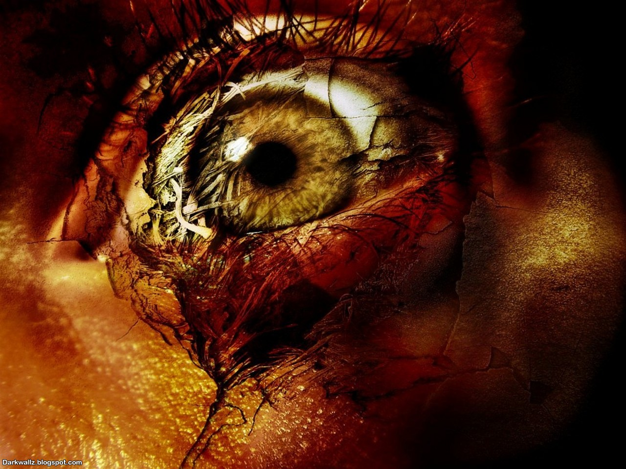 Scary Eyes Wallpapers 09 | Dark Wallpaper Download