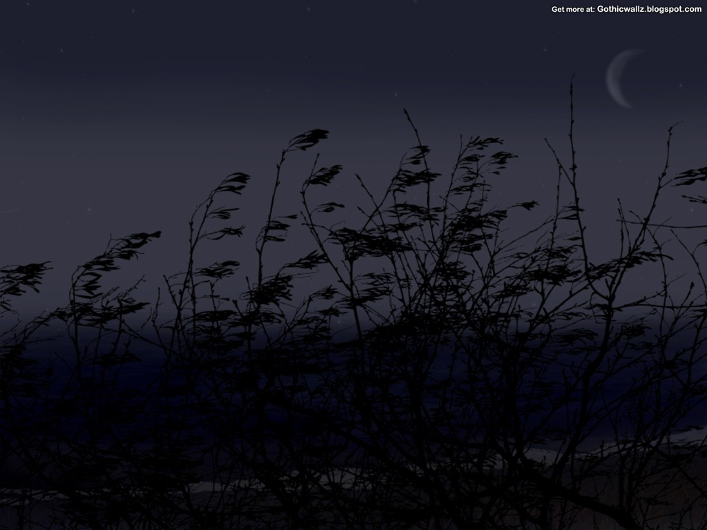 Gothic Wallpapers: The-Lake-at-night