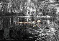 Gothicwallz-like a river.jpg