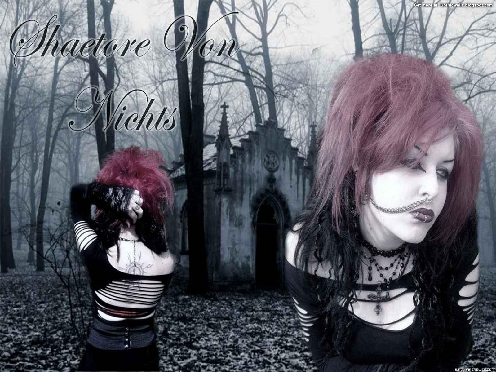 Shaetore_On_The_Forest   Gothic Wallpaper Download