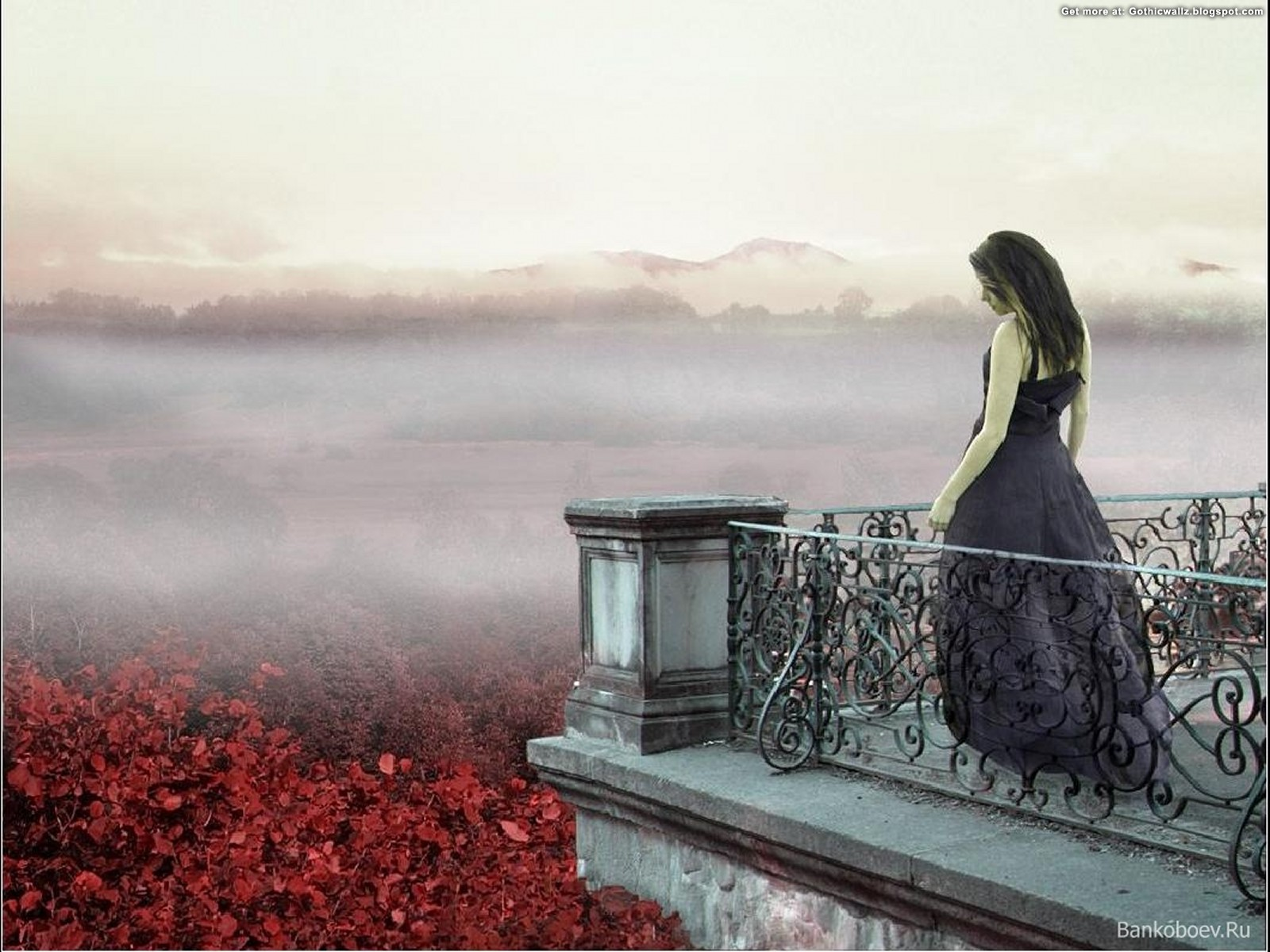 Looking From Balcony | Gothic Wallpaper Download