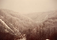 Elsaß im Winter