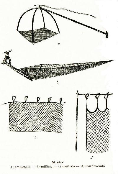[fisher15.jpg]