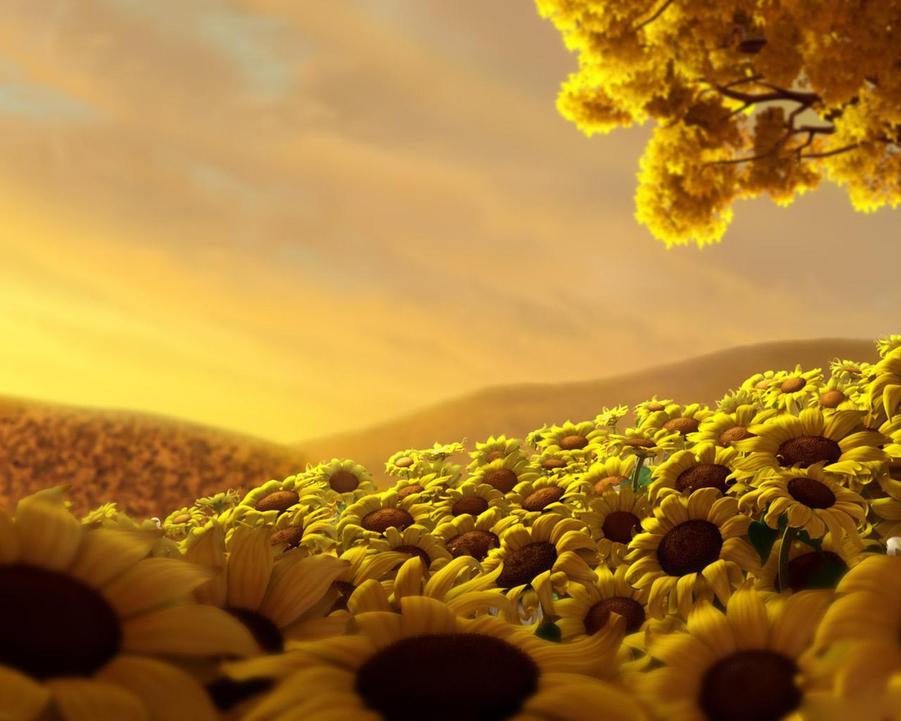 http://2.bp.blogspot.com/_-mGZCI2AwHc/TQL7dFD0KLI/AAAAAAAAADs/wpaCCs2AxfE/s1600/Sunflower+Meadow+Wallpaper+3D.jpg