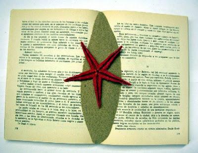 estrella de mar. estrella de mar.