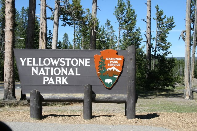 Woman Falls To Death On First Day Of Job At Yellowstone