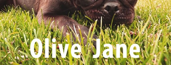 Olive Jane