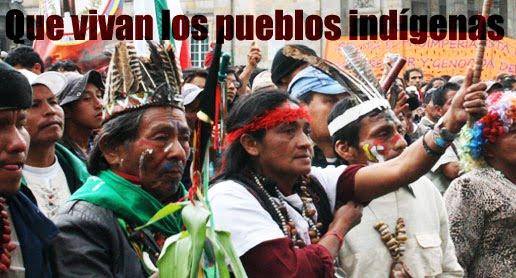 distribucion poblacional pueblo indigena america: