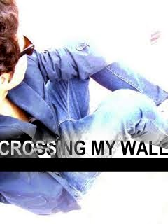 Crossing my Wall