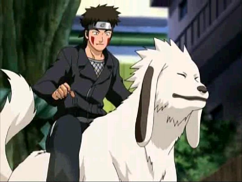 Kiba And Akamaru