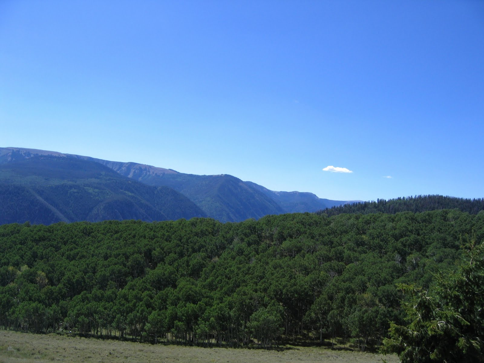 Janie and steve utah trails last of the green for Aspen ridge