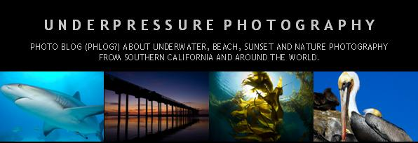 Underpressure Photography - Blog about underwater and nature photography