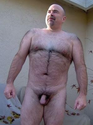 Homens Ursos Pelados Gay Fotos De