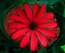 Esta flor roja también es bonita...