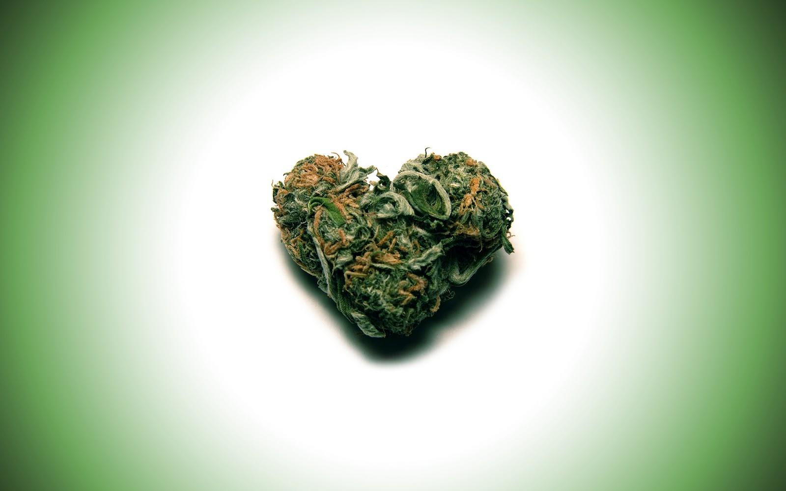 http://2.bp.blogspot.com/_-xMhVmY1fo0/TOmJpVKh0EI/AAAAAAAAAJA/r0ULl-5pKpU/s1600/heart+weed.jpg