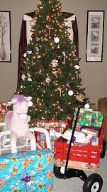Santa Came!!