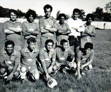 Acervo Varzeano Regional-nº 41