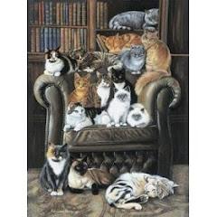 The Literary Gato