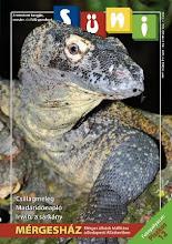 Süni 2009/4. szám (szeptember-október)
