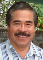Joaquín Peregrino Gómez