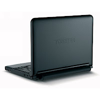 Toshiba Mini Notebook NB255-N250