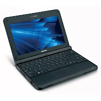 Toshiba Mini Notebook NB255-N240