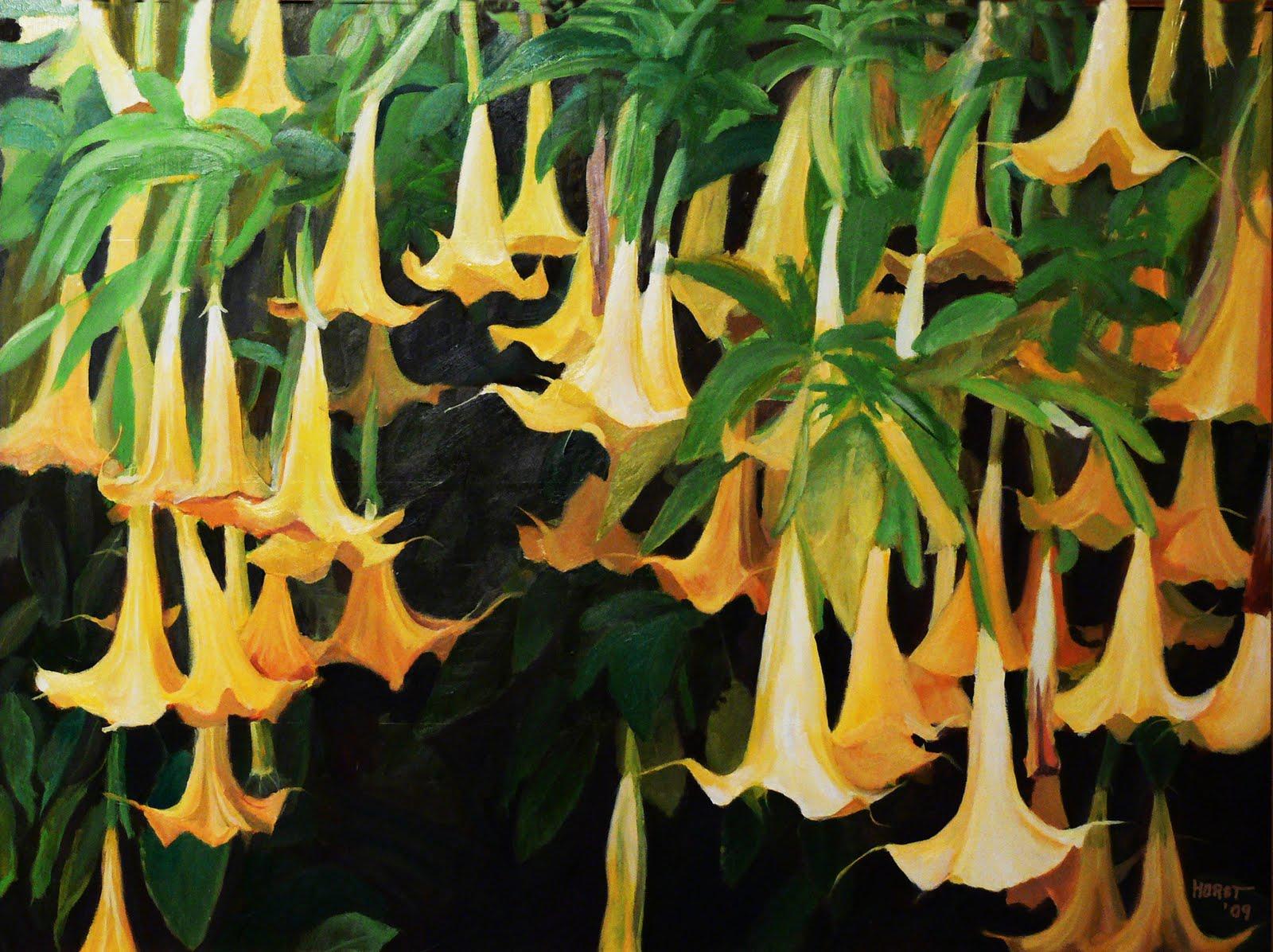angel trumpet flower on Pinterest