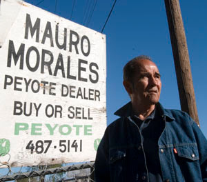 Cactus stickers and the occasional rattlesnake are all in a day's work for Mauro Morales when he goes hunting for peyote