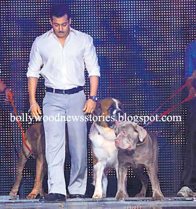 Salman Khan With His Pet Dogs on the Sets of 'India's Got Talent'