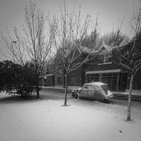 Dando una vuelta {Libre} Nieve_6829_700-2