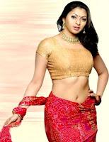 Actress in blouse hot saree still 18
