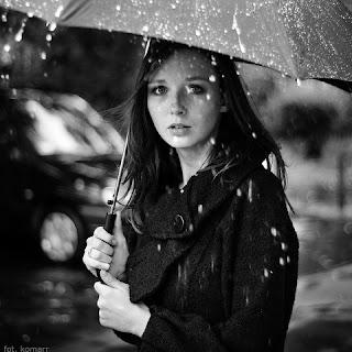 "DLL Rainwear - Adult Navy ""Raining Cats and Dogs"" Compact Umbrella"