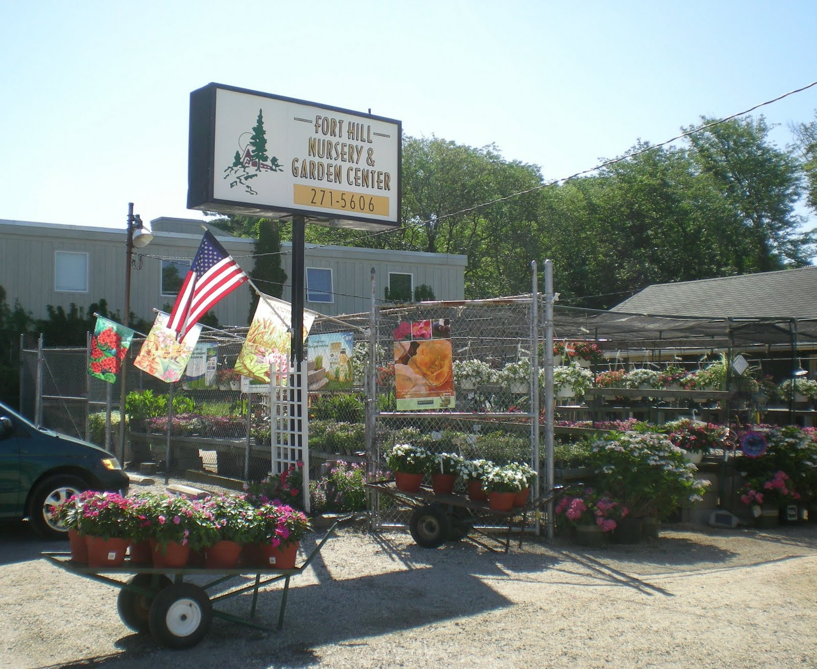 Instead He Offered Me The Chance To Contribute Text, History, And Photos.  We Decided To Explore The Survival Ability Of My Local Garden Centers.