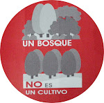 UN BOSQUE