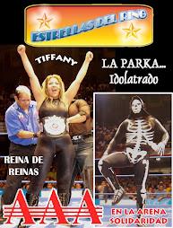 Estrellas del Ring, primera epoca. (2005)