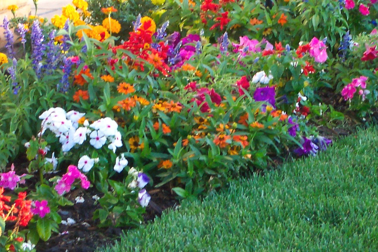 Flower garden design pictures house beautiful design for Backyard flower bed ideas